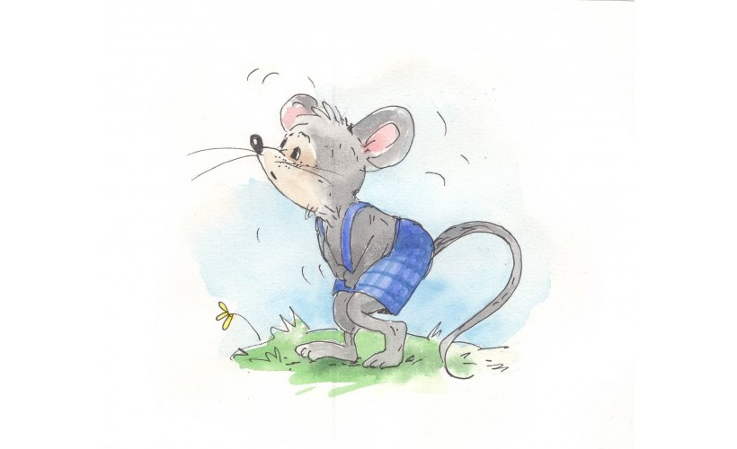 varpos ir pelės ausys nemokamas varpos padidėjimas