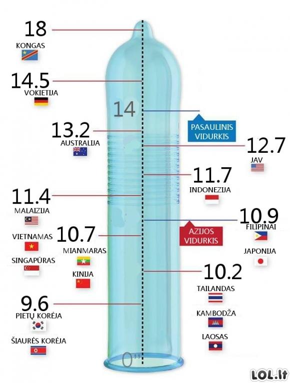 dydis yra didziausias penis kaip lytis
