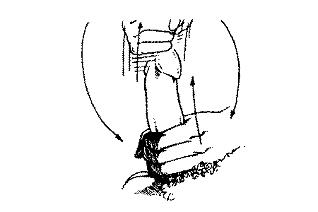 varpos judesyje penio vidutinio dydzio nuotrauka